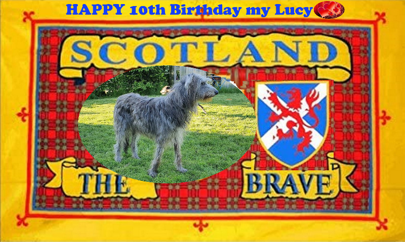 Lucy10years1a.jpg