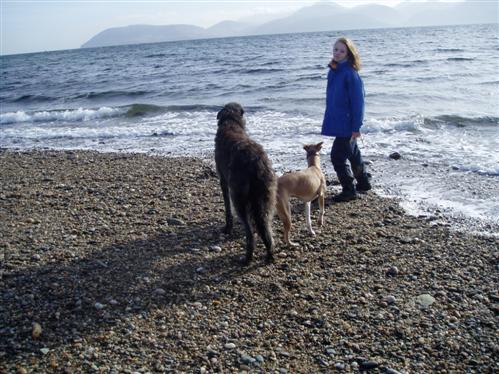 Cara__Ellie___Charlotte_at_Claonaig_Bay.jpg