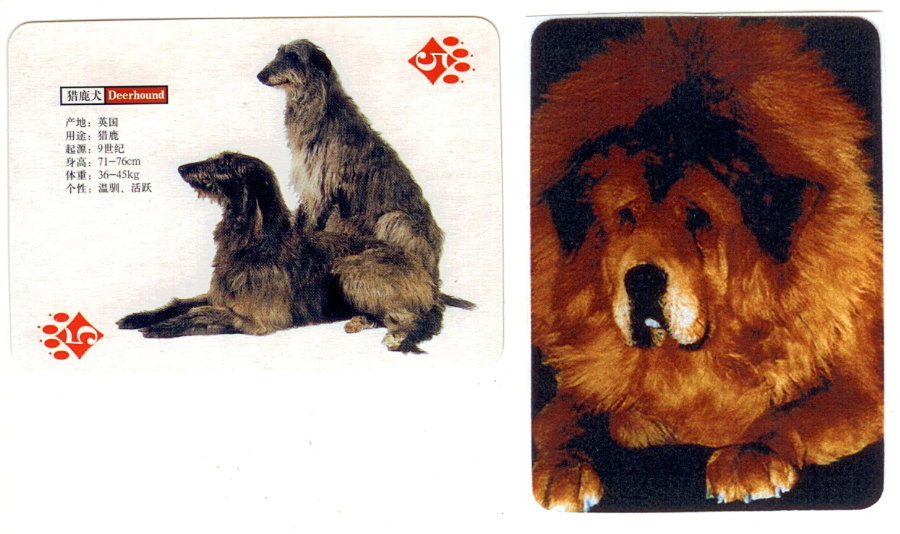 Scan_card_China_1.jpg
