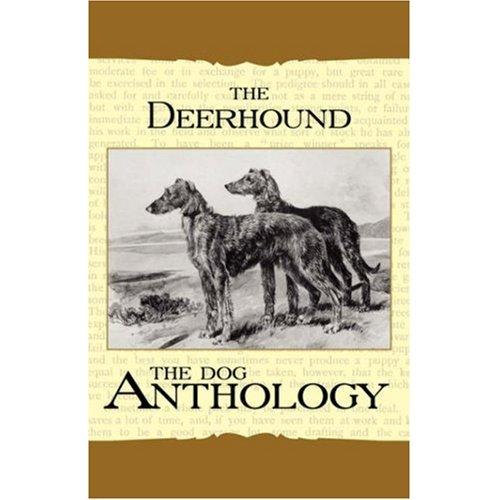 The_Dog_Antology_Deerhound.jpg